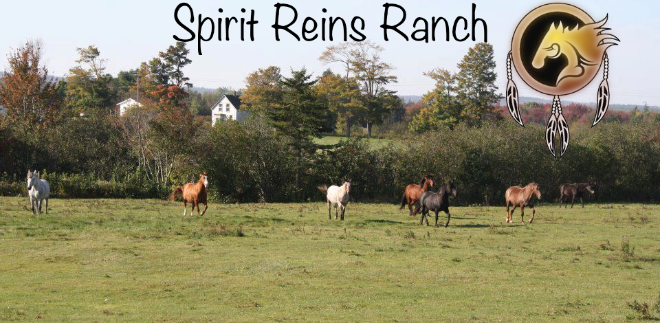 Spirit Reins Ranch