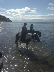 Riding in the Bay of Fundy